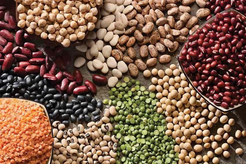 Legumbres, una gran fuente de proteínas