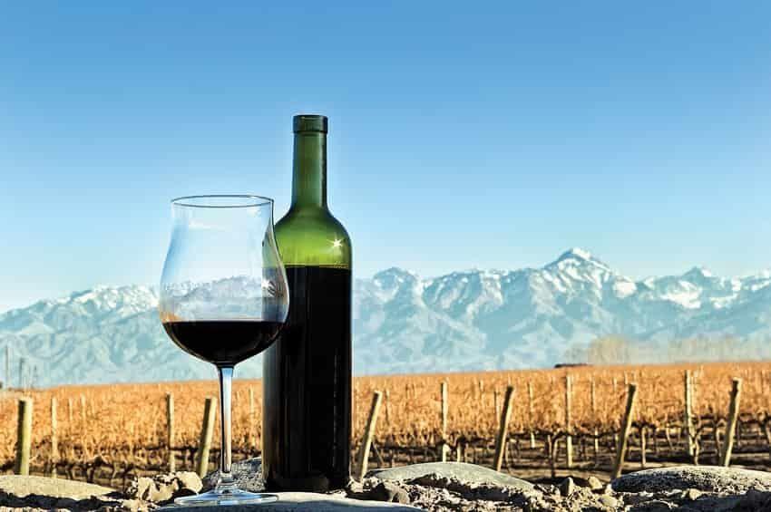 Un acontecimiento histórico en la promoción del vino